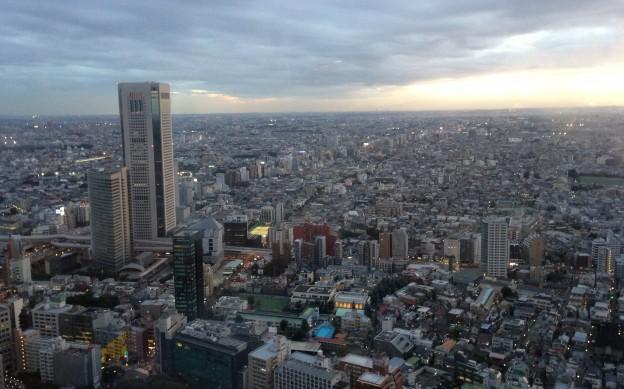 東京都庁展望室(新宿区)