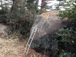 登りやすいようにはしごがかけられている。