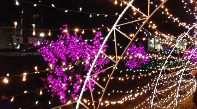 ひろしまドリミネーション2013(広島市中区)