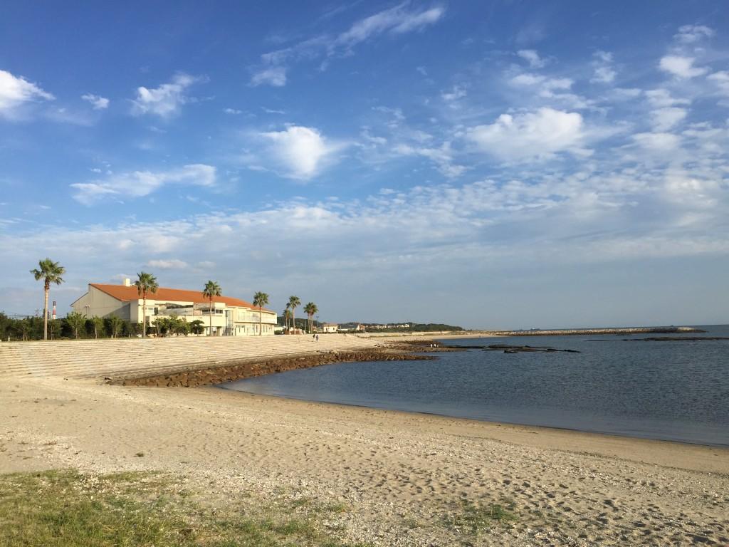 美しい砂浜