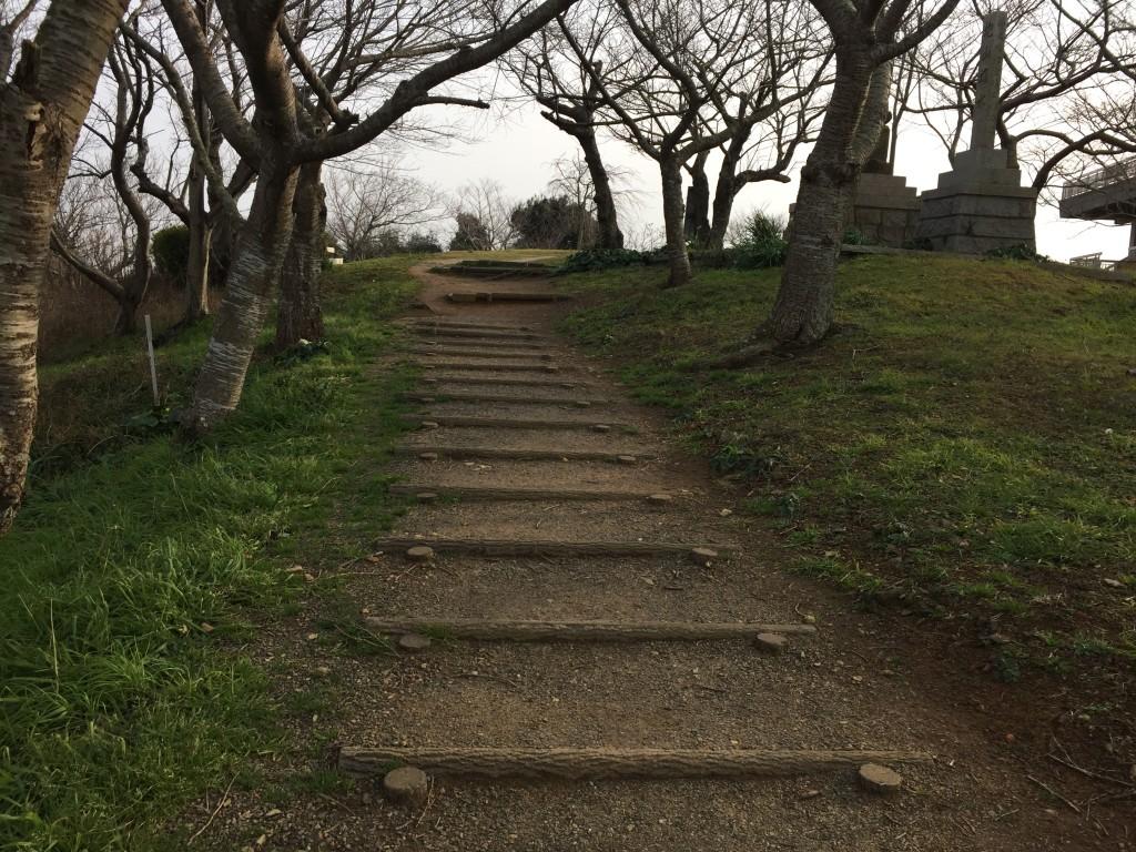 山道を散歩できます。