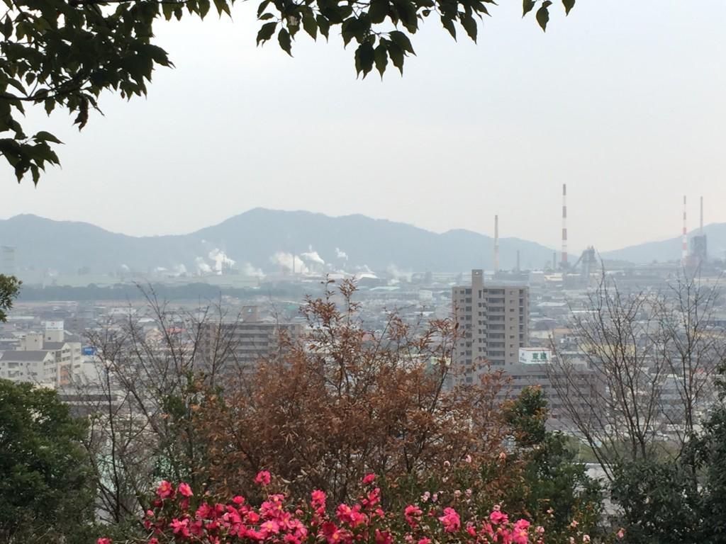 展望広場からの景色。花や木々の隙間から街が見える。