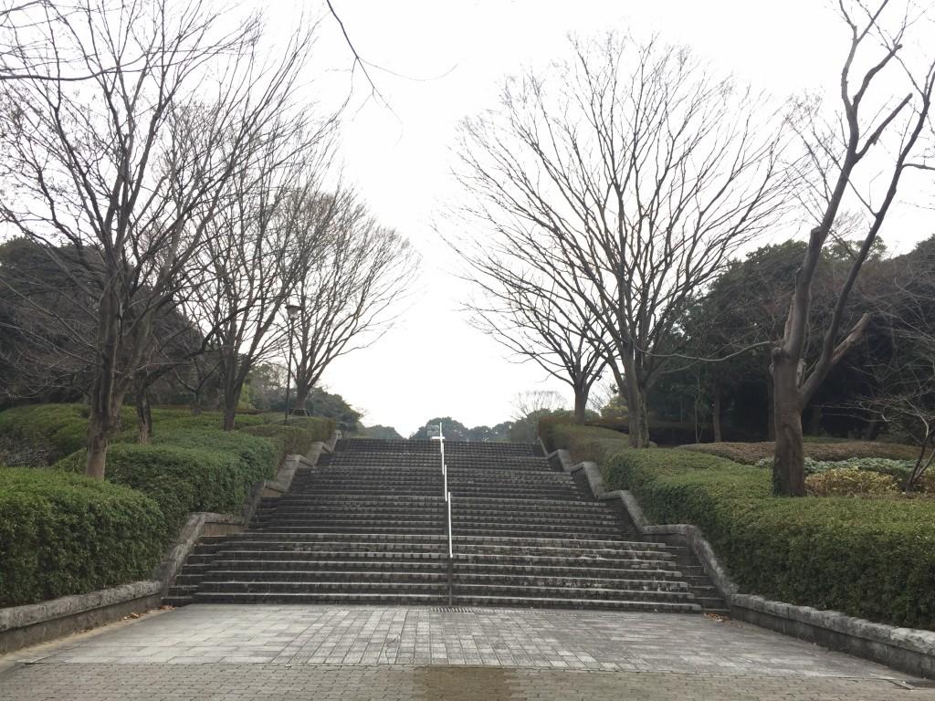 カスケードの階段を上っていく。