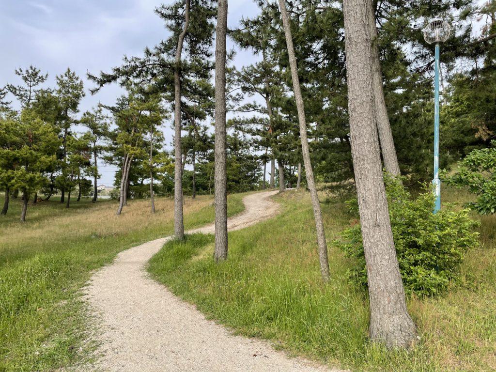 公園の中をぐるっと散歩ができる。